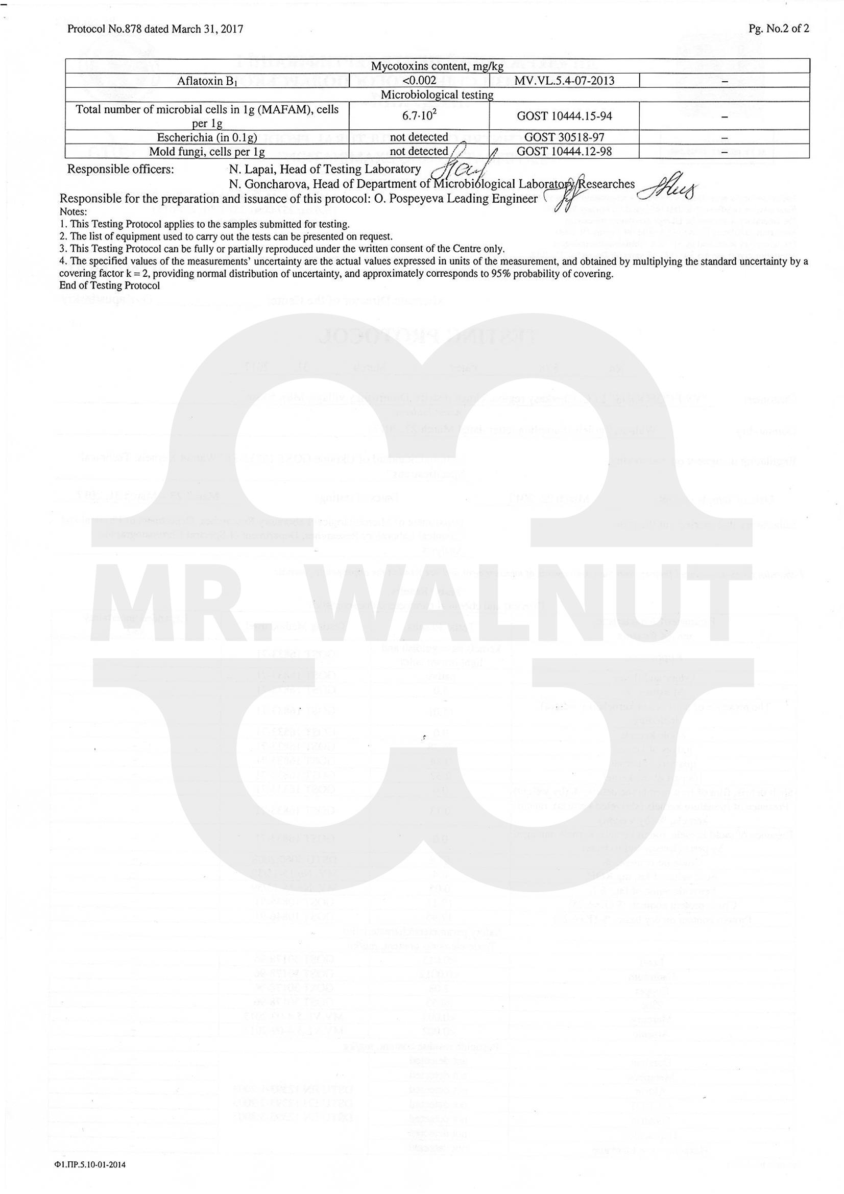 protokol878b-е2